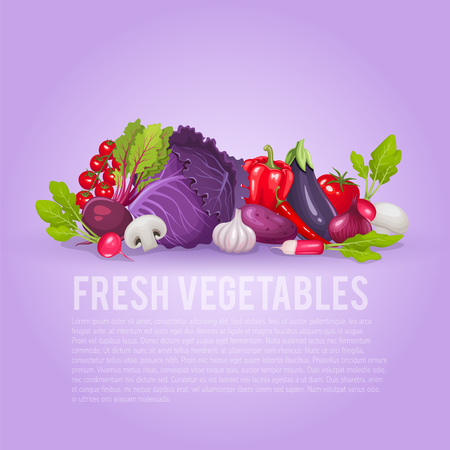 Fresh purple and red vegetables. Healthy and organic vector illustration background.