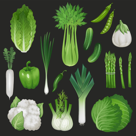 garden peas: Set of fresh green vegetables. Healthy food illustration. Illustration