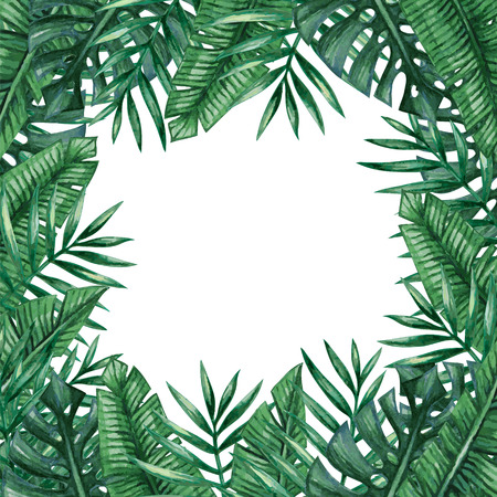tropical: Palm tree leaves background template. Tropical greeting card. Illustration