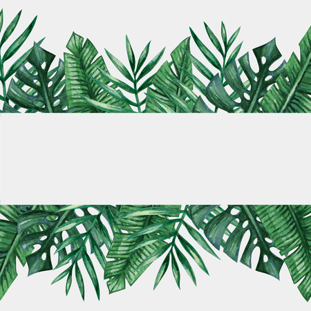Palm tree leaves background template. Tropical greeting card. Banco de Imagens - 62670858