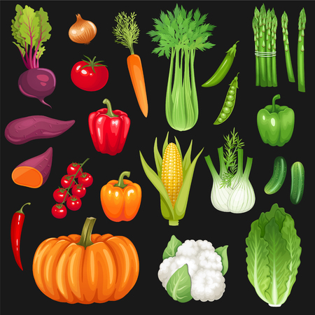 Set of fresh vegetables. Vector illustration.