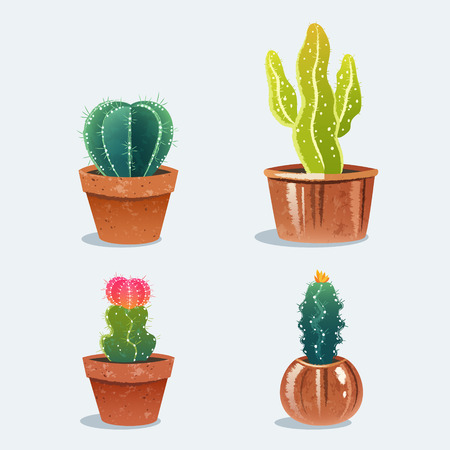 Set van vier cactus in bloempot. Thuis planten. Vector illustratie