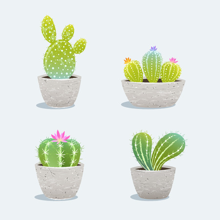 Set of four cactus in flower pot. Home plants. Vector Illustration Ilustracja