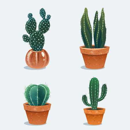 Set of four cactus in flower pot. Home plants. Vector Illustration Vettoriali