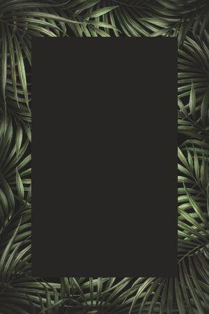 Dark palm leaves border design. Tropical watercolor background. Zdjęcie Seryjne