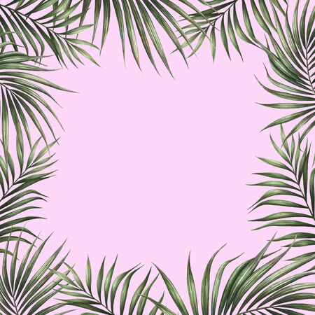 Palm leaves border design with pink background