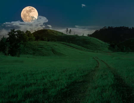 grass field at night. Gree Grass Hill In Full Moon Night. Photo Field At Night