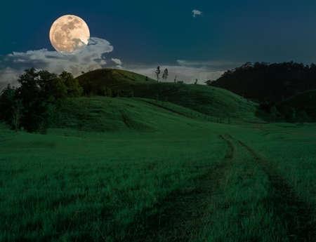 gree: gree grass hill in full moon night. Stock Photo