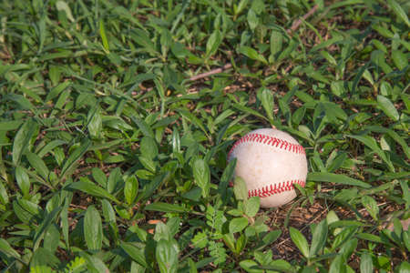 outfield: A white used baseball on the fresh green grass with copy space