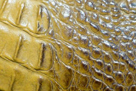 Close-up crocodile leather texture background
