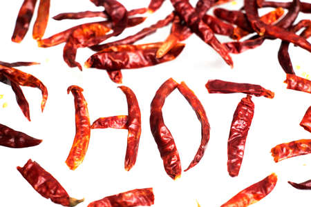 Hot Chili on a white background. Reklamní fotografie