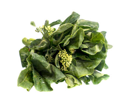 fresh baby broccoli isolated on a white background.
