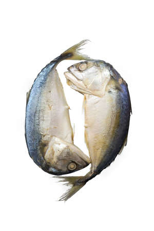Streamed mackerel, Mackerel fish isolated on a white background.