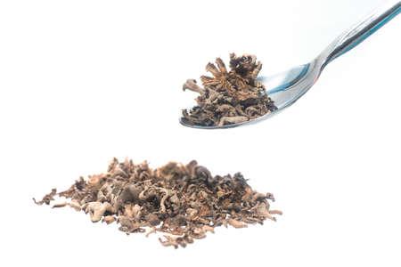 Schizophyllum commune mushroom or split gill.Mushrooms. dried mushroom food for health.