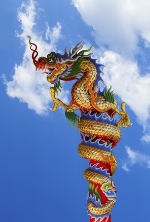 dragon  on  blue sky photo