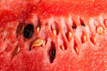 pervaded: water mellon