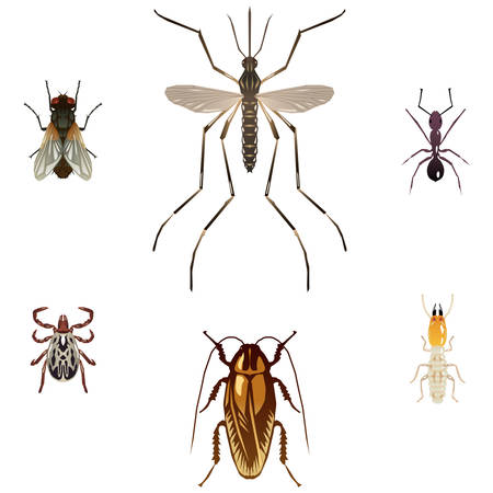 Six pest insect illustrations Stock Illustratie