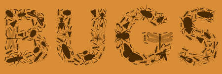 The word BUGS made of bugs Vector