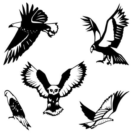 Stylized birds of prey Illustration