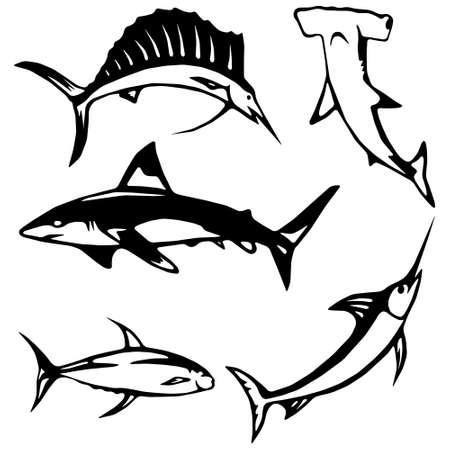 pez martillo: Estilizados peces grandes Vectores