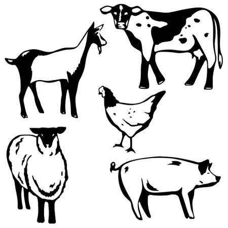 barnyard animals Vector