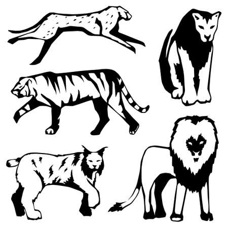 Five stylized illustrations of large cats