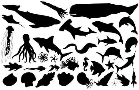 pez martillo: la vida marina vector siluetas