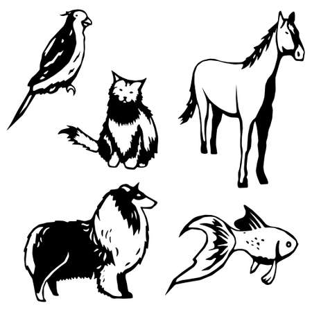 domesticated animals Vector