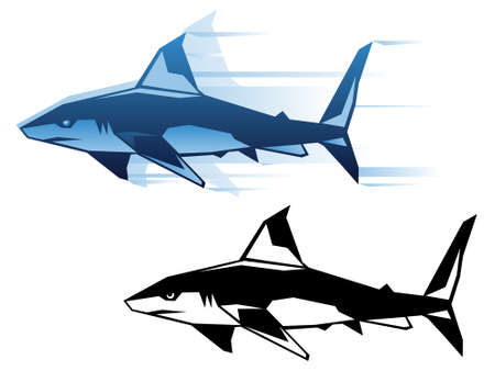 fin swimming: Graphic shark illustration in two color schemes