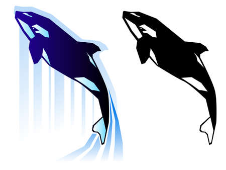 Graphic killer whale illustration Çizim