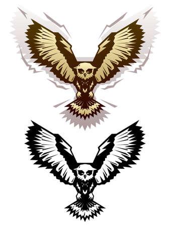 owl vector: Graphic owl illustration