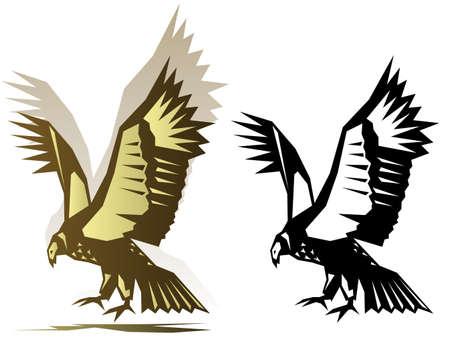 Graphic condor illustration Illustration