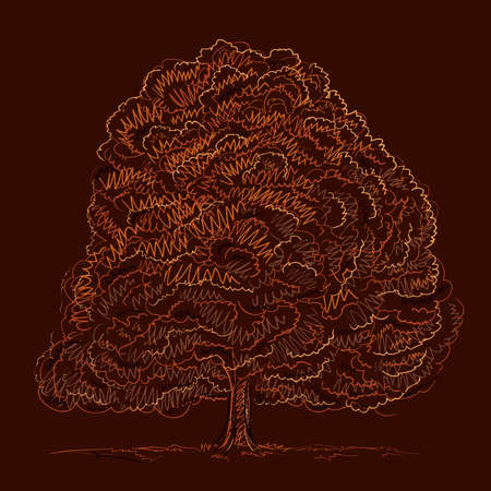Tree sketch for autumn