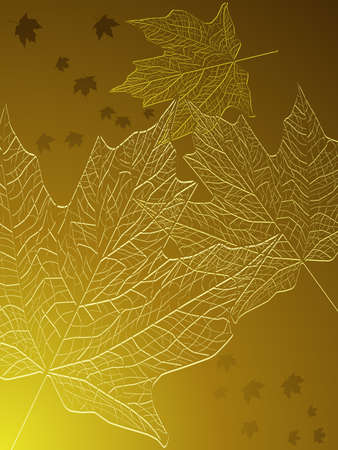 Gold maple leaves Vector