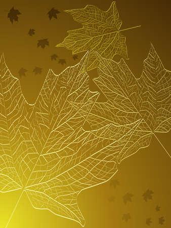 Gold maple leaves Illustration