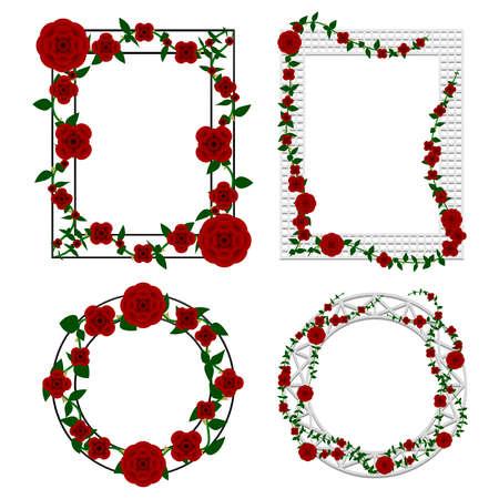 Rose frame illustrations 向量圖像