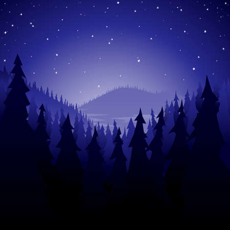 Pine forest at night