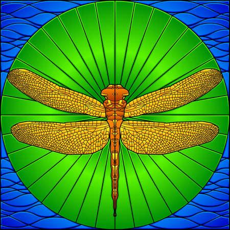 Glasmalerei dragonfly Standard-Bild - 6656737