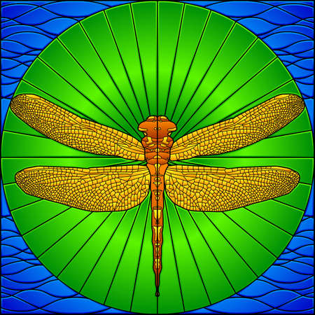 Stained glass dragonfly Vector