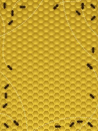 Bee hive border 일러스트