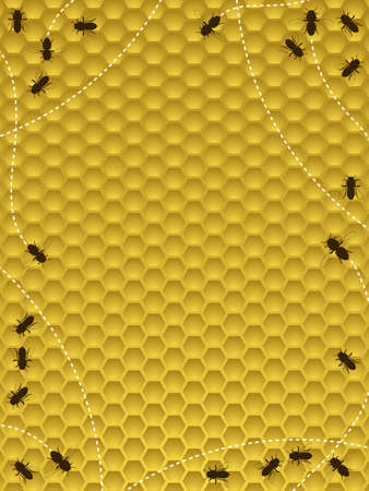 honey comb: Bee hive border Illustration