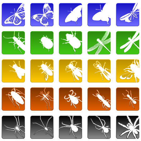 insect icons Vector