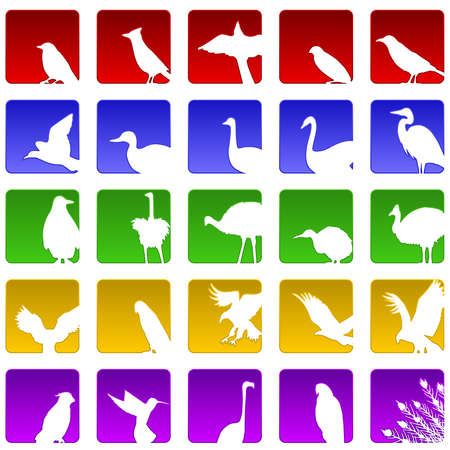 Twenty five bird icons Vector