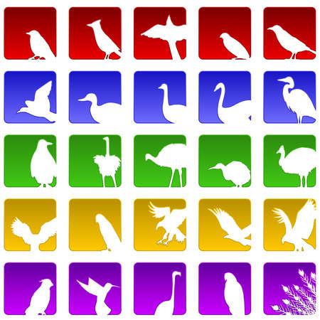 Vijfentwintig vogel pictogrammen  Vector Illustratie