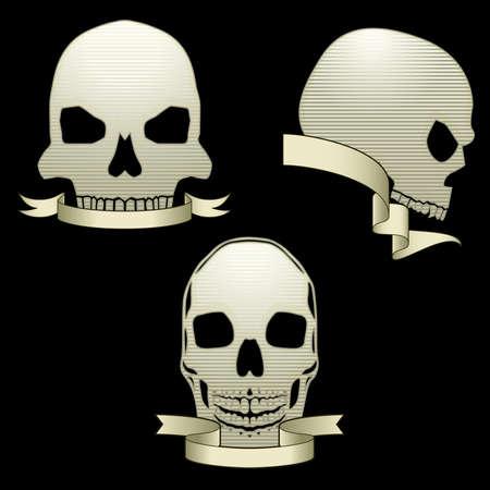 Skull banners Stock Vector - 7262128