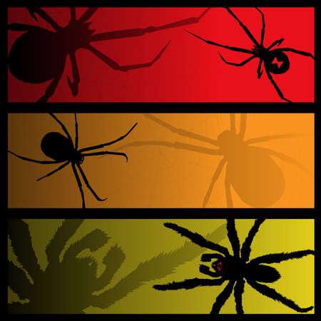 viuda: banners de ara�a