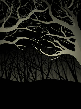 Lit forest canopy at night