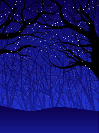 fog forest: Holiday forest canopy Illustration