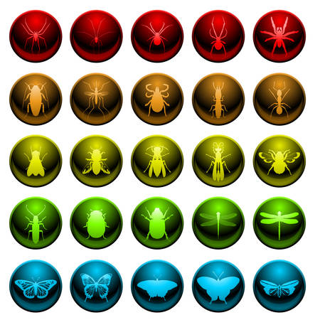 Spider and insect icon set Vector