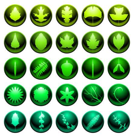willow: Leaf icon set Illustration